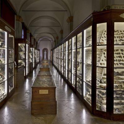 Panoramica Museo Chierici_foto Vannini_light