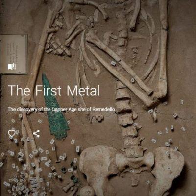 metal-eng-480x471