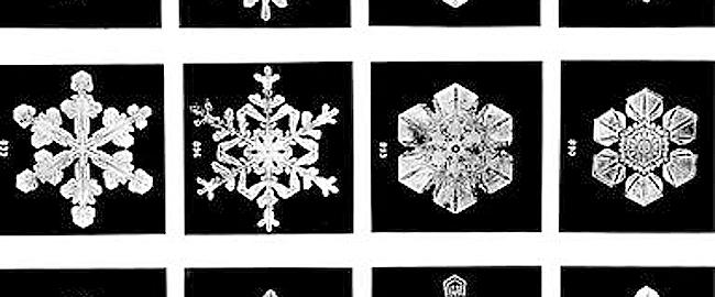 fiocchi-neve-home