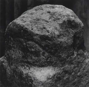 Grassi-3