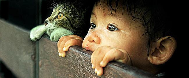 bambino-e-gatto-650px