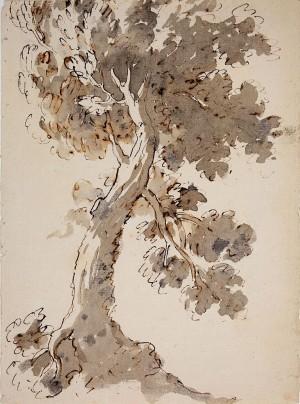 Ambito emiliano ( XVIII secolo) – Albero