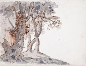 Ambito emiliano (XVIII secolo) – Gruppo di alberi