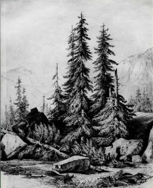 Antonio Fontanesi – Gruppo di alberi